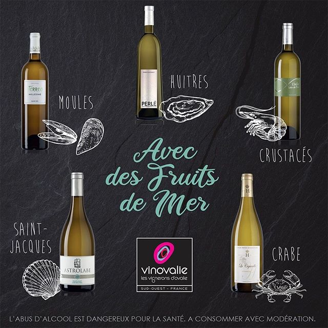 Sur la plage abandonnée🏖️... coquillages et crustacés🦞...⠀ Ok ! Mais avec quel vin blanc 🍾 boire avec des fruits de mer ? ⠀ ⠀ Le poisson 🐟, les mollusques et les crustacés s'harmonisent naturellement avec le vin blanc, mais trouver l'accord parfait relève parfois du casse-tête.⠀ ⠀ Pour vous permettre d'accompagner idéalement vos plats🦀, on vous suggère quelques accords mets/vins qui sauront régaler vos papilles !⠀ Pour tout savoir : lien en bio⠀ ⠀ #vinovalie #vinblanc #wine #winemaker #winelover #fruitsdemer #crustaces #wineporn #accordmetsetvins #terreo #perle #linfini #lacigaralle #chateaudecayx #astrolabe #loindeloeil #aopgaillac #aopcahors @vindegaillac @cahorsmalbec #cavecooperative