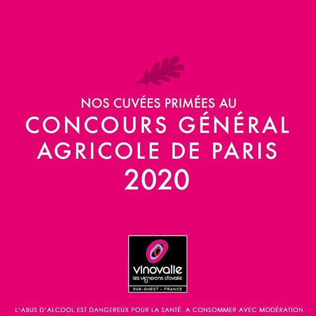 🥇 #cga2020 Le travail des femmes et des hommes de Vinovalie une nouvelle fois salué au Concours Général Agricole de Paris 2020 !⠀ 👏Bravo aux vignerons, techniciens viticoles, maîtres de chais, œnologues... grâce à qui toutes ses médailles ont été remportées !⠀ ⠀ Tous les vins médaillés sur Vinovalie.com⠀ ⠀ #medailles #vinovalie #tarani #terreo #saintmichel #chateaumarguerite #comtedenegret #aopfronton #aopgaillac #aopcahors @vinsdegaillac @vinsdefronton @cahorsmalbec #wine #winelover #winemaker #cooperation @lacooperationagricole