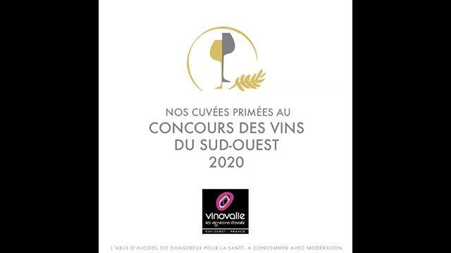 🥇Le concours des Vins du Sud Ouest a salué le travail de notre coopérative et nos vins !⠀ 🍷Avec notamment le PASSION, AOP Gaillac rouge médaille d'or pour la 3ème année consécutive !⠀ 👏 Bravo à tous ceux qui travaillent pour cela, de la vigne à la bouteille !⠀ ⠀ #passion #vinovalie #cooperative #aopgaillac #aopcahors #igpcomtetolosan #vin #wine #winelover #winemaker #medailles #concours #vin #winetasting #wineaddict  #winelovers #frenchwine #winestagram #instawine @les_vinsdusudouest @lacooperationagricole @vinsdegaillac