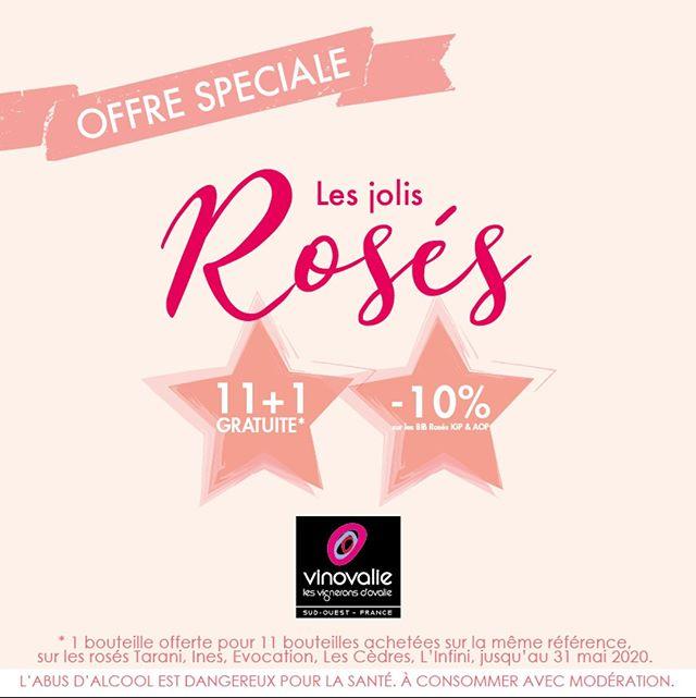% OFFRE SPÉCIALE SUR LES ROSÉS %⠀ ⠀ 🍷 11 bouteilles achetées + 1 bouteille offerte sur une sélection de cuvées (dont Inès et Tarani)⠀ 🍷 -10% sur les BIB (IGP et AOP)⠀ ⠀ Offre valable dans les boutiques Vinovalie et sur  www.vinovalie-boutique.com/promotion/⠀ ⠀ #vinovalie #wineaddict #promotion #vin #rose #vinrose #tarani #ines #jaimelevin #BIB